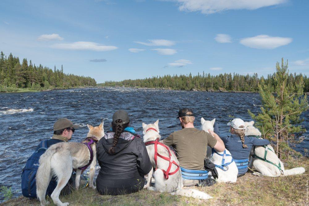 Le cani-rando, ce sont aussi des instants précieux de contact avec l'animal, de quiétude dans des paysages inouïs.
