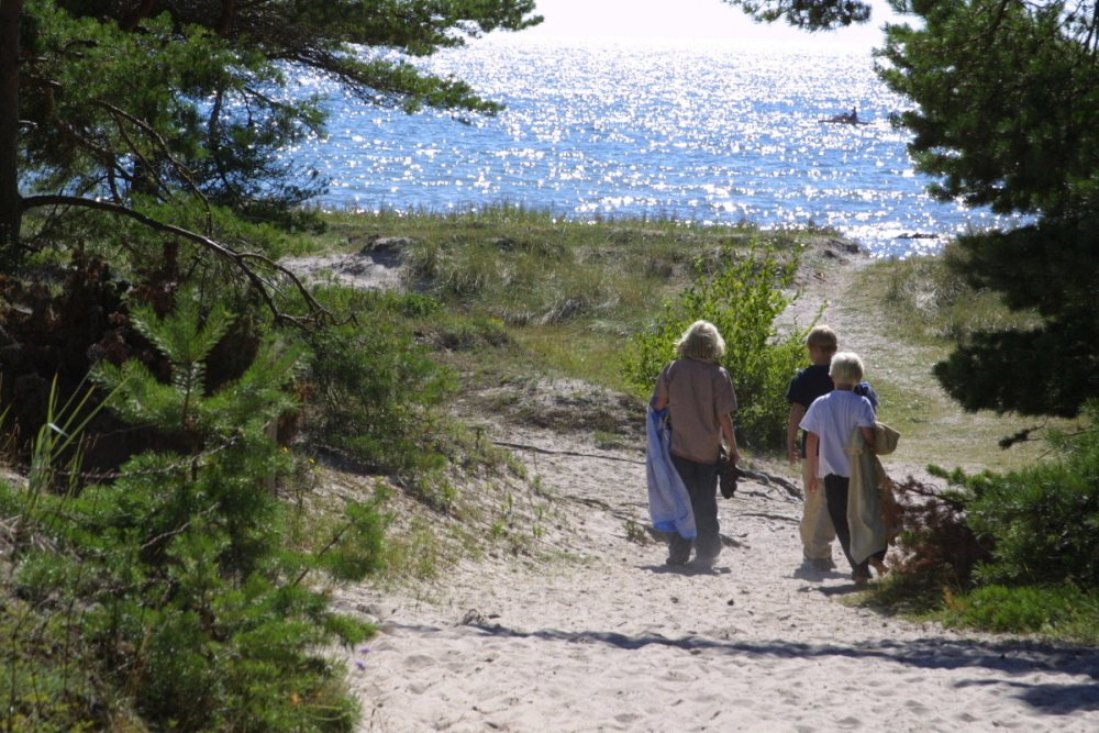 Gotland 2010 001
