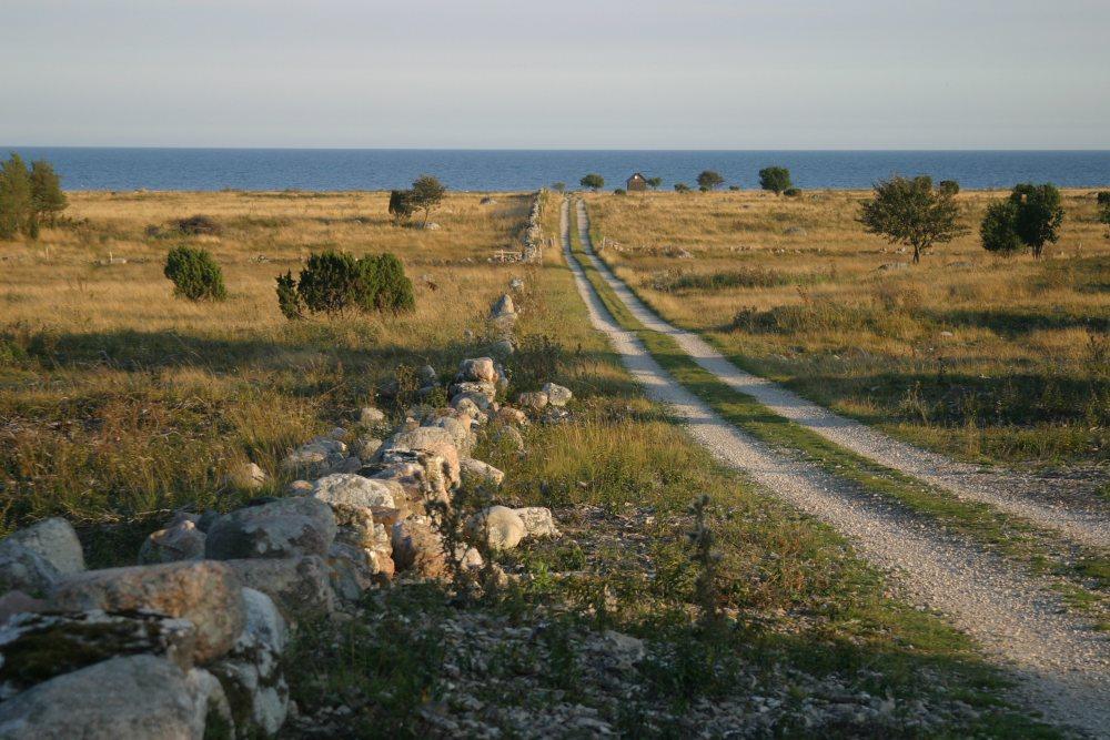 Gotland 2010 009